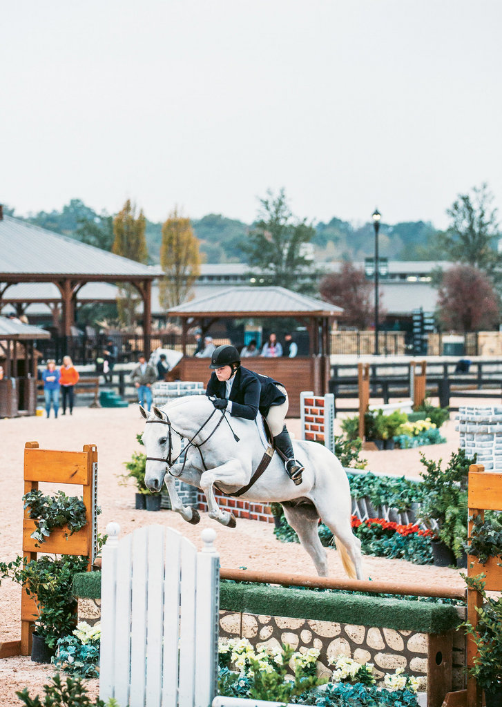 A horse and rider compete in a hunter competition.