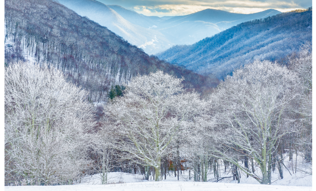 Terry Barnes, Winter in Cataloochee Valley, located in Great Smoky Mountains  National Park 1st Place Winner in the Professional Category