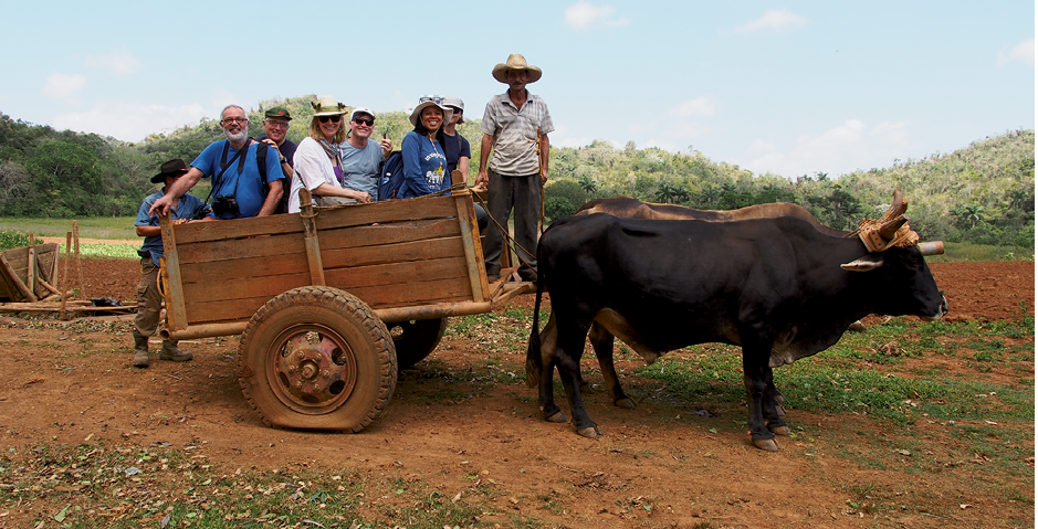 Farm and market visits, in Cuba and Bangkok, with Small Footprints