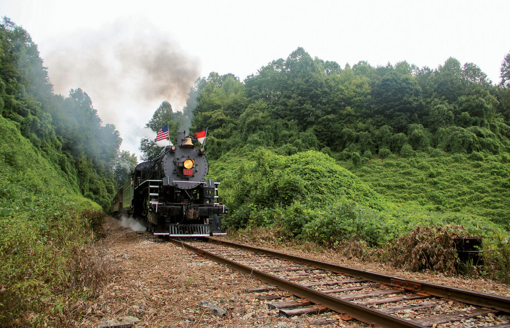 Hop Aboard: Learn about Great Smoky Mountains Railroad excursions at gsmr.com.