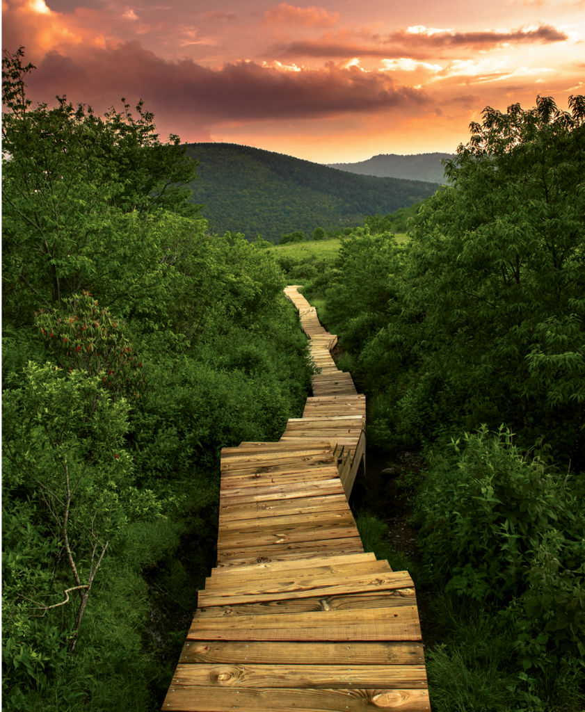 Joseph Young, A sunset hike to Sam's Knob near Shining Rock  Wilderness 1st Place Winner in the Amateur Category