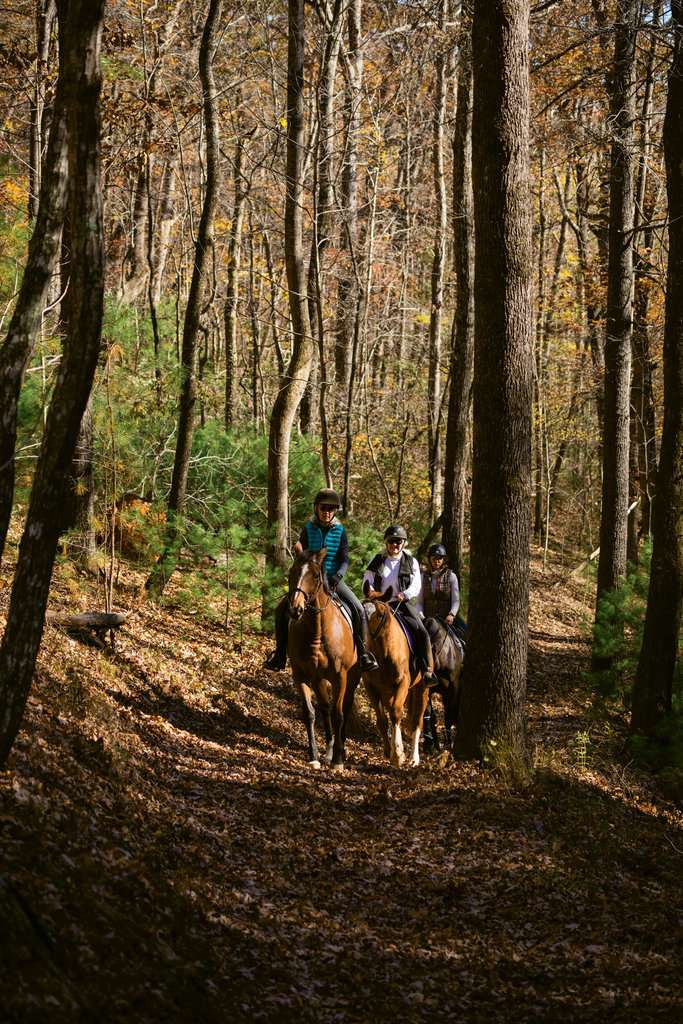 Members of the Foothills Equestrian Trails Association (FETA) can access around 150 miles of trails throughout Polk County, most of which are on private land.