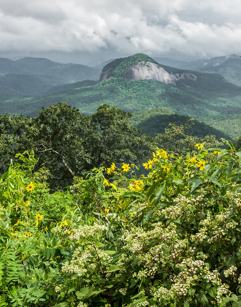 Honorable Mention: Looking Glass Rock with Sunflowers and Snakeroot by Jim Britt (Amateur category)
