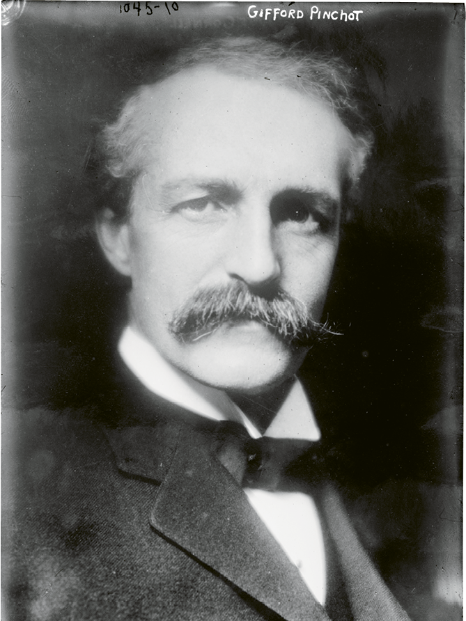 Gifford Pinchot was an early advocate of practicing scientific forestry in WNC and around the nation; in 1905, he became the first chief of the new United States Forest Service.