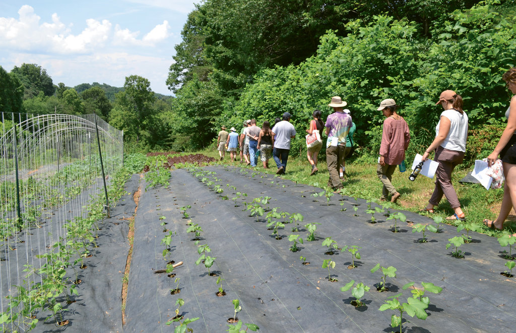 A group tours Tom Elmore's Thatchmore Farm in Leicester.