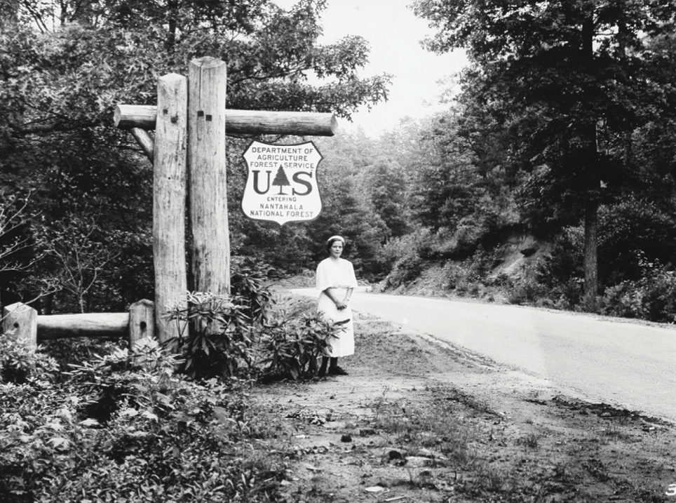 Pisgah, established in 1916, was one of the first national forests in the eastern US.