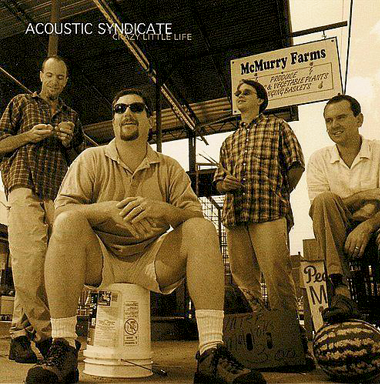 3. Acoustic Syndicate Crazy Little Life (2000)