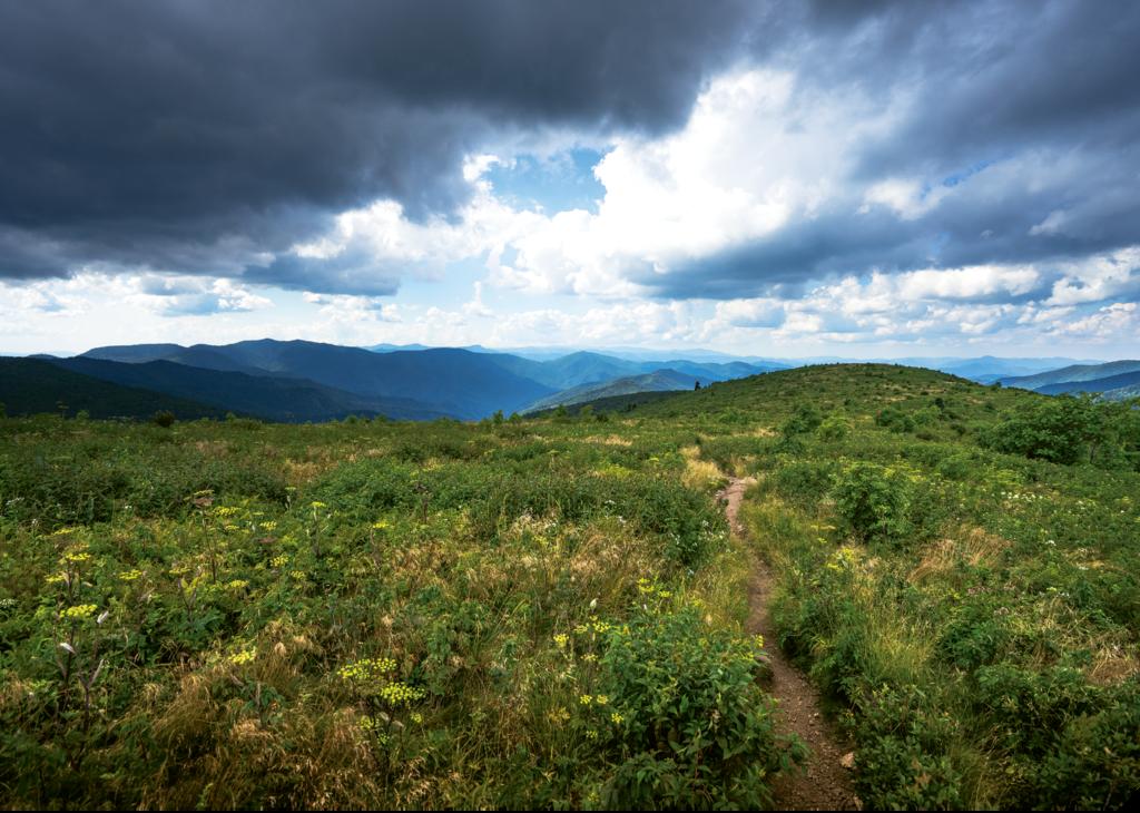 10. Art Loeb Trail