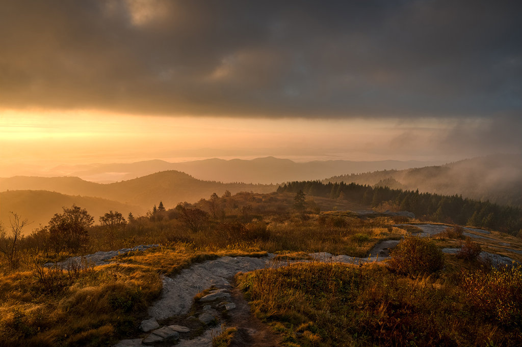 Honorable Mention: Autumn Light by Matt Williams (Professional category)