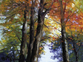 "Looking Up in the Fall, 9"" x 12"", oil  by Bette Coningsby"