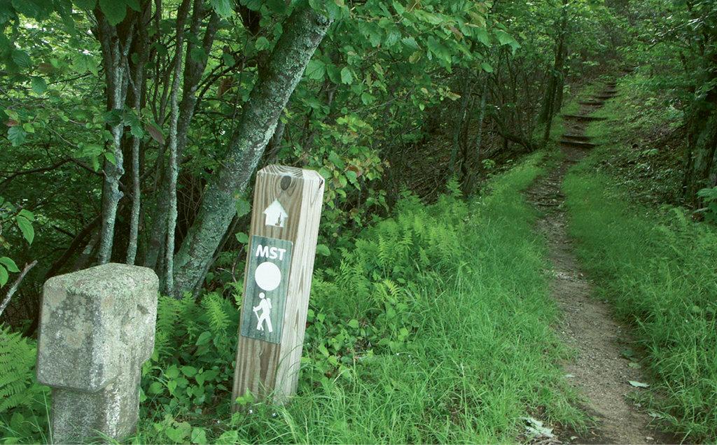 Bluff Mountain Trail, Doughton Park