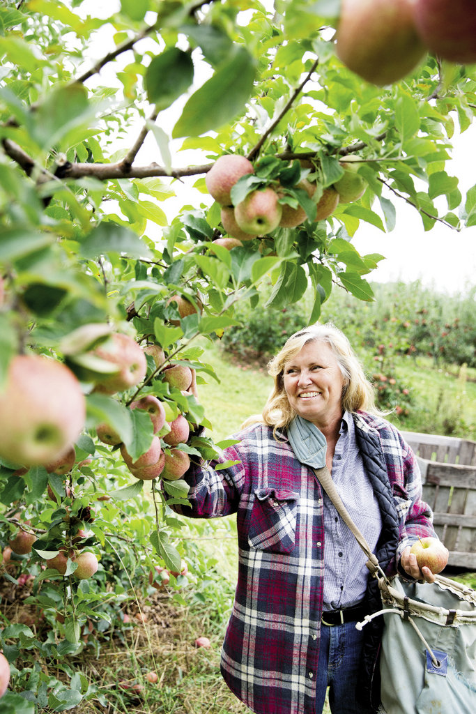 Branching Out With knowledge passed through generations, the Creasmans started their orchard in 1996 with four types of apple trees. Today, they maintain 45 varieties, most of them antique heirlooms. Left, 20-bushel bins can hold 1,750 to 2,500 apples, depending on size.