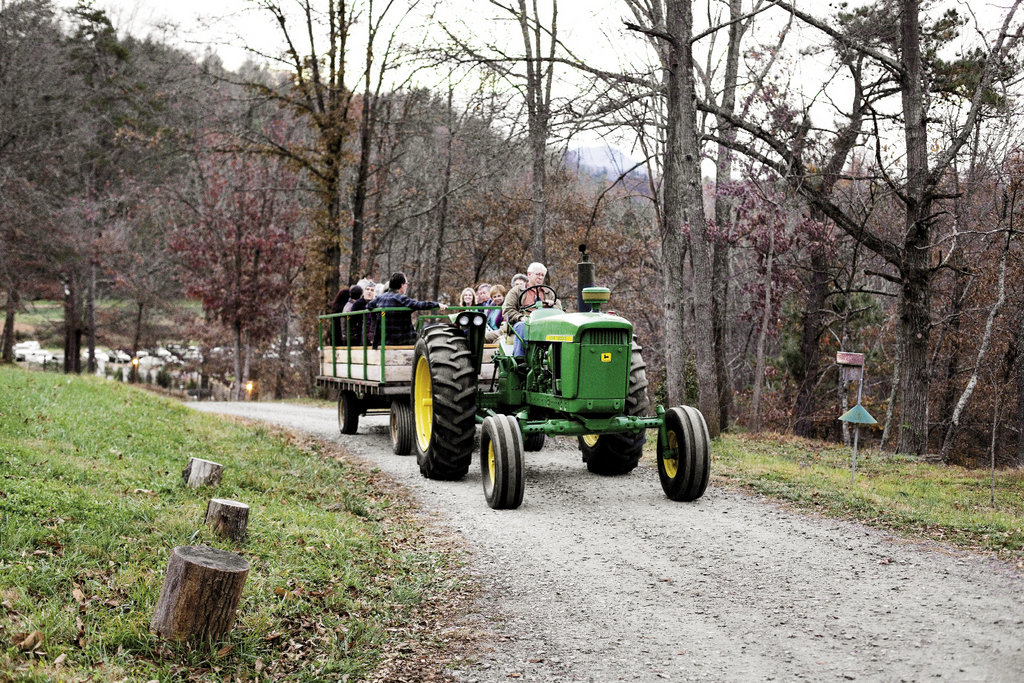 From a parking area, guests were shuttled to the barn via a tractor-drawn wagon, setting the tone for the farm-focused feast.