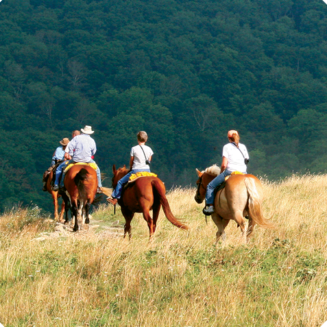 Cataloochee Ranch. Photo courtesy of Cataloochee Ranch