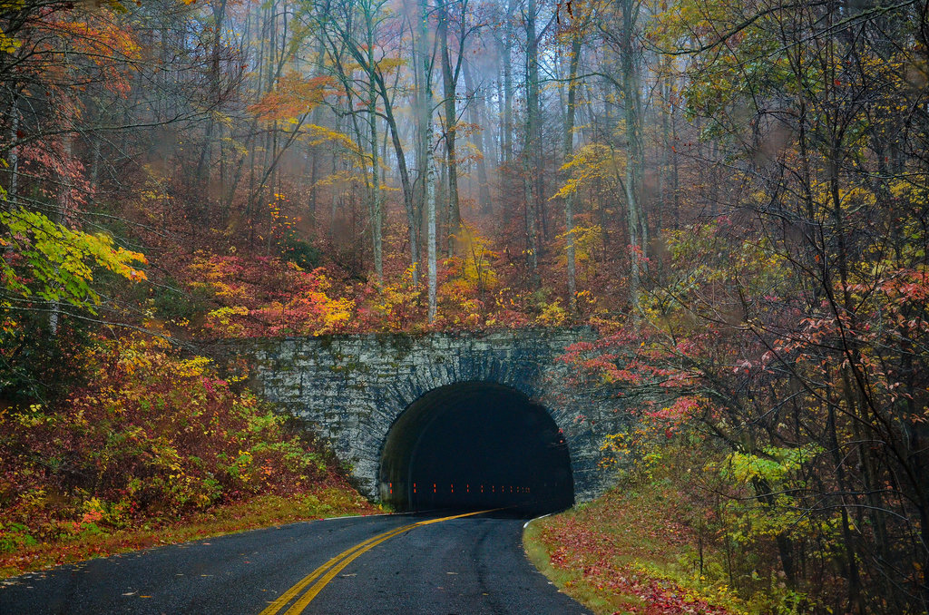 HONORABLE MENTION - LIGHTS ON - Cheryl Binnall - A tunnel along the Blue Ridge Parkway. Amateur category