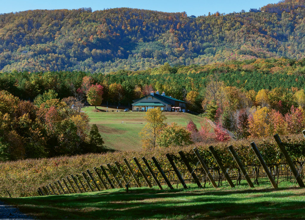 Jones von Drehle Vineyards & Winery in the Yadkin Valley. Photo courtesy of Ben Hermann