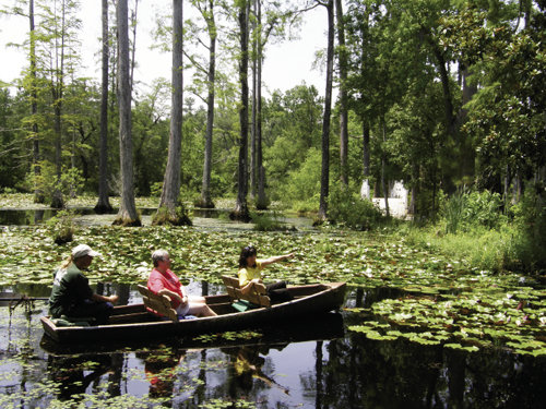 At Magnolia Plantation you can get out on the water for closer inspection of the natural surroundings.