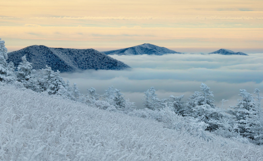 FINALIST - WINTER WAVES - Dale King - On a cold February day, King set out before sunrise to get this shot of a frozen winter wonderland atop Round Bald in the Roan Highlands.  Amateur category