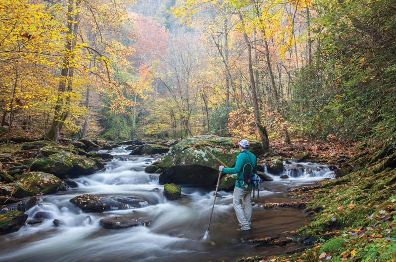 Cool Rush - Joyce Kilmer-Slickrock Wilderness Area, covering 17,394 acres in Nantahala National Forest in Graham County, offers hike-in fishing opportunities.