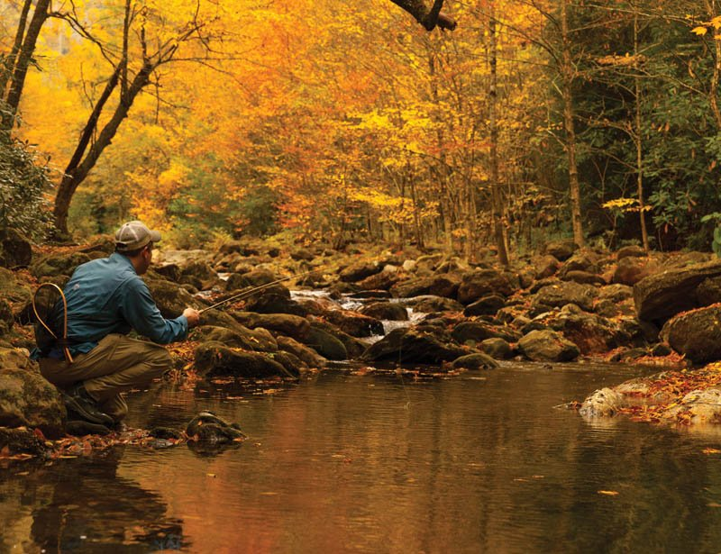 Gone Fishing - The South Toe River, which runs through Yancey County, requires stealthy wading to avoid spooking wary trout.