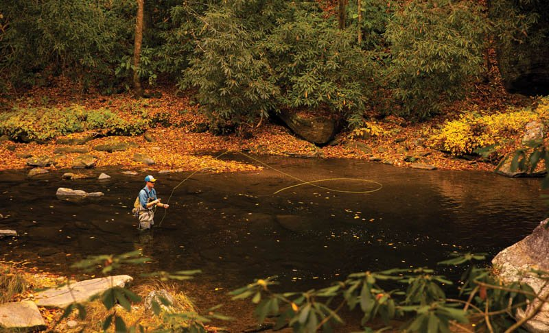 Cast Away - The headwaters of the French Broad River, like the sources of many other drainages in WNC, offer rugged and wild fishing opportunities for the adventurous angler