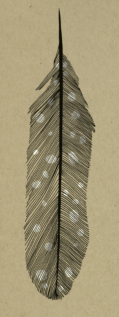 Feather print. Courtesy of Drew Findley