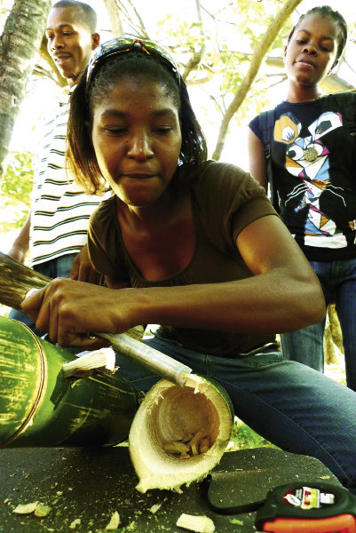 Last year, a group of 30 students from the Business and Technology Institute in Les Cayes, Haiti, learned the basics of cultivating and processing bamboo for construction.