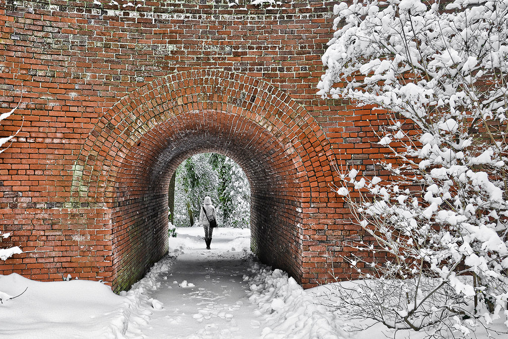 Honorable Mention: Historic Bridge in Biltmore Estate, NC by Bistra Hristova (Professional category)