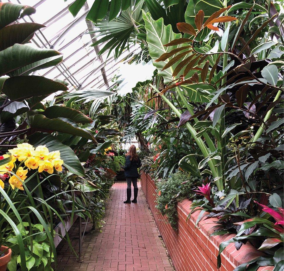 Biltmore Conservatory