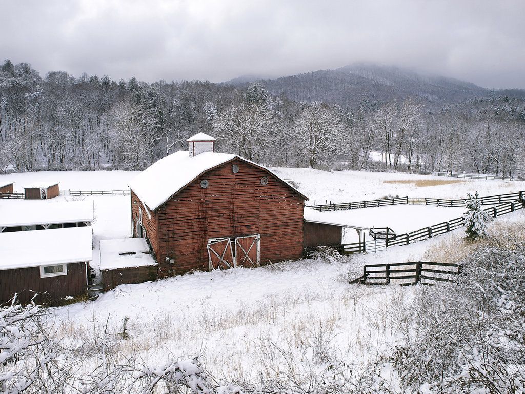 HONORABLE MENTION - SUNDANCE IN THE SNOW - J.K. York - Reams Creek Road, Weaverville. Amateur category