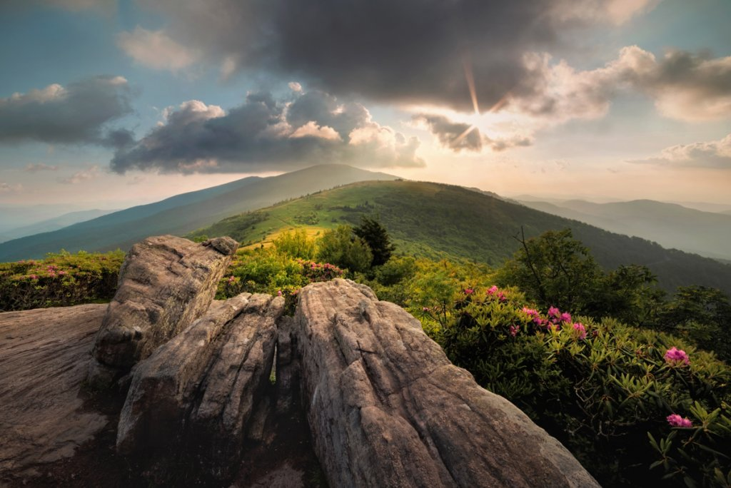 Jane Bald in the Roan Highlands