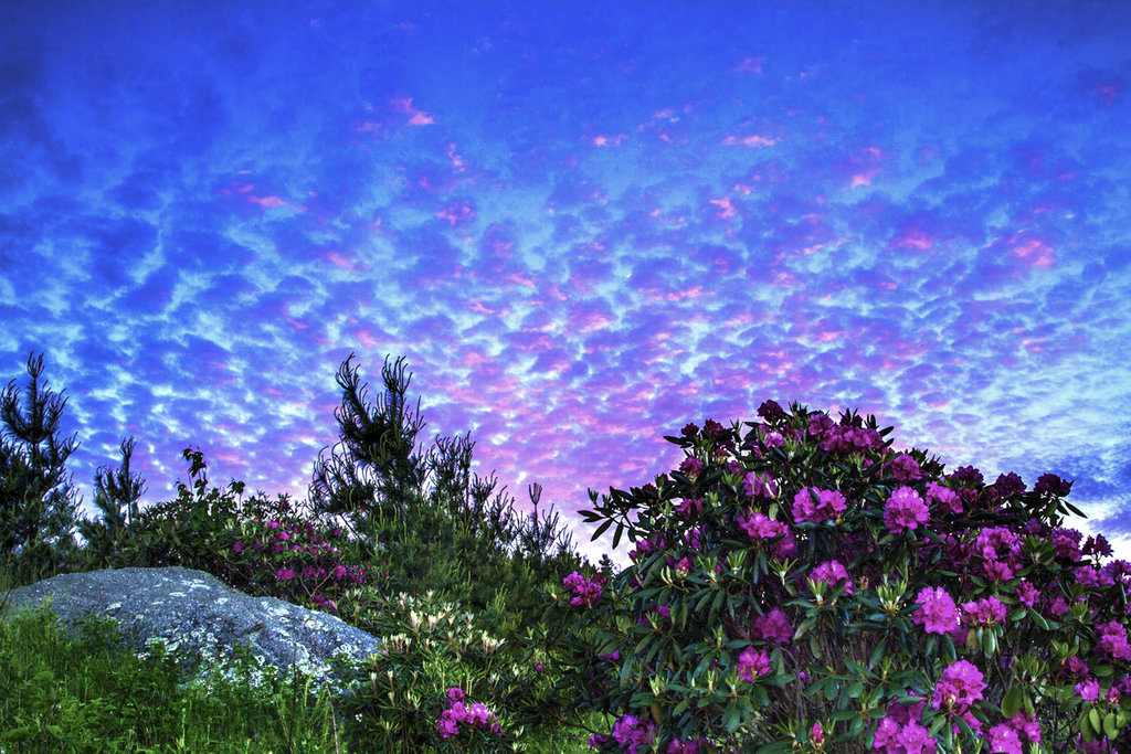 HONORABLE MENTION - SKY RHODOS - Jim Ruff - Blue Ridge Parkway at Thunder Hill Overlook. Professional category