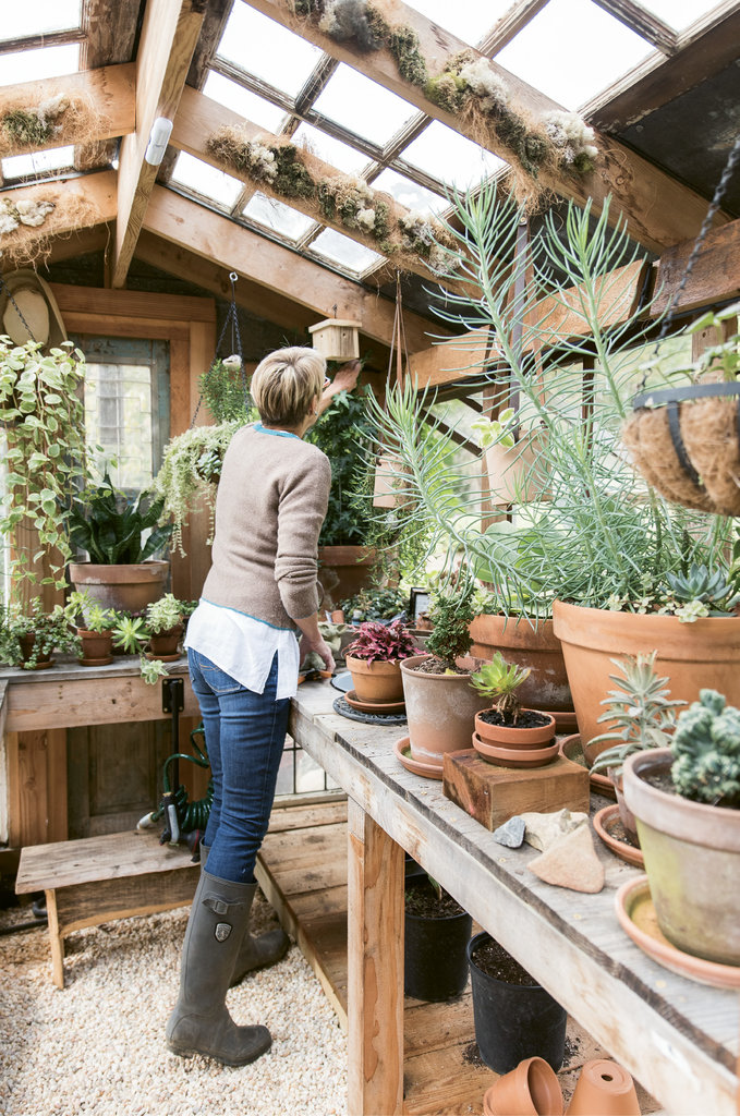 The husband, who is a general contractor, designed and built the greenhouse using reclaimed materials. The trickiest part was finding old windows all the same size.