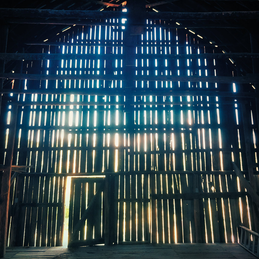 FINALIST - LET THE LIGHT IN - Lauren Rutten - Rutten used her iPhone 6 to capture this silhouetted shot taken inside an old tobacco barn in Marshall.  Professional category