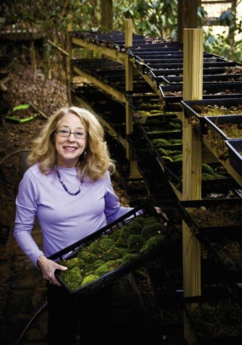 Martin nurtures hundreds of varieties of mosses, and educates others on their eco-qualities.