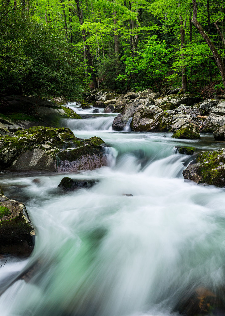 Honorable Mention: Aqua Rapids by Greg A. Kiser (Professional category)