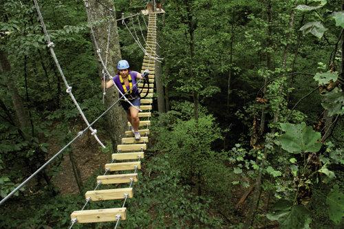 TimberTrek Aerial Adventure Park