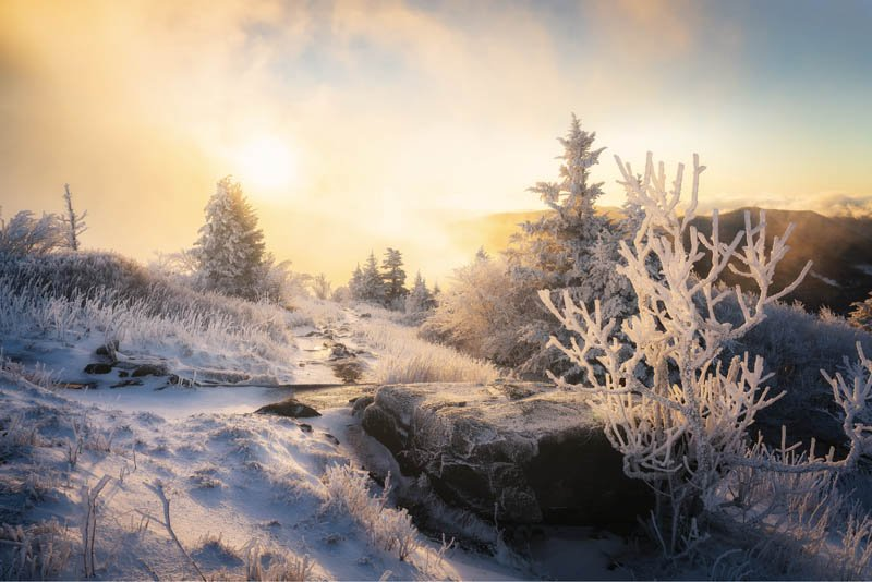 Fire & Ice - Topping out over 6,000 feet, the Roan Highlands along the North Carolina/Tennessee border is a wondrous place, with vast grassy balds and rare spruce-fir forests that glisten under sunlit snow and ice.