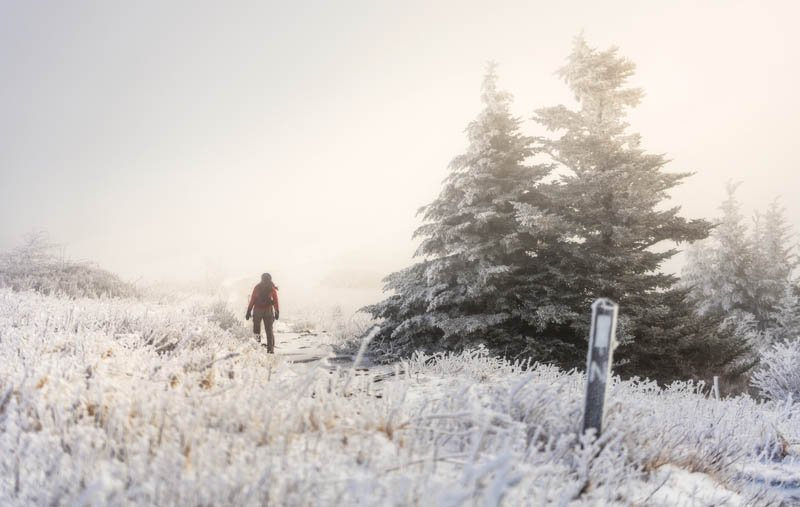 WhiteOut - Even with the 360-degree views thwarted by clouds, a frosty winter hike along the Appalachian Trail in the Roan Highlands rewards with tranquility and beauty.