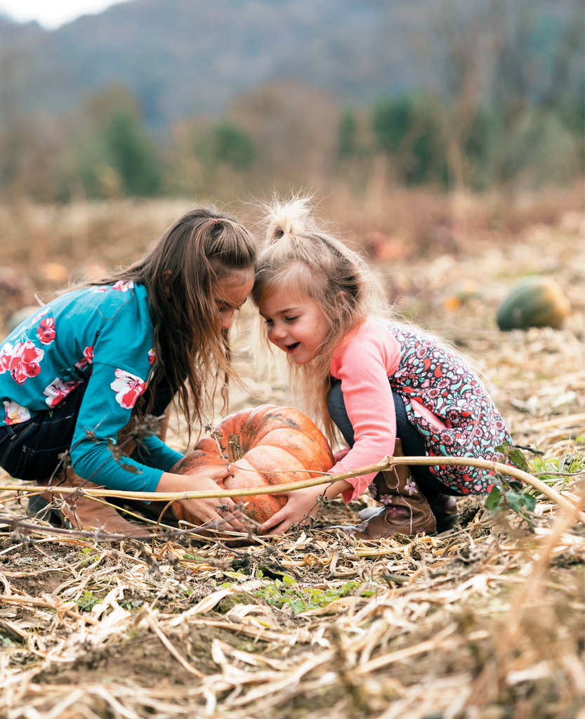 An outing to a pumpkin farm is a quintessential fall experience that all ages will enjoy. And the ability to choose and cut your favorite gourd straight from the vine presents an even greater reward for busy little bodies.