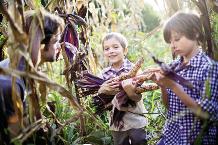 Eating organic is a major mission in the Seifert household. The filmmaker grew especially concerned about GMOs after the birth of his first two children, sons Scout (center) and Finn.