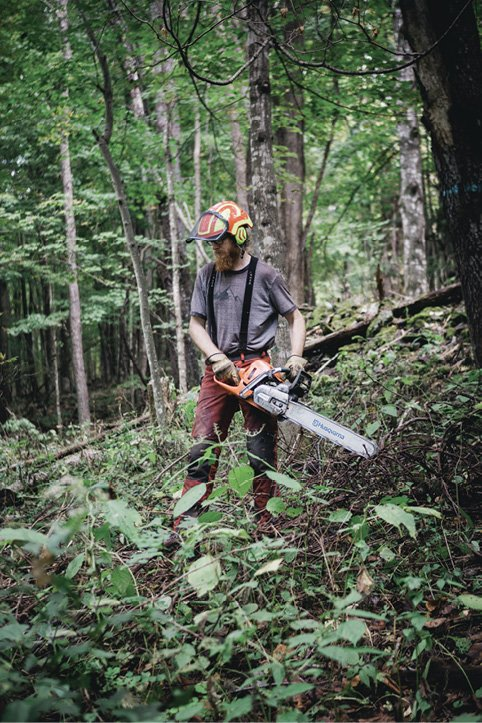 In the Clear - Logger Ian Anderson, decked in full safety gear, fires up a big chain saw as part of the clearing process.