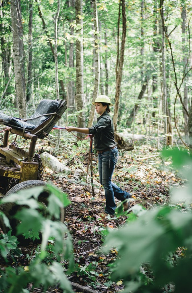 Learning the Ropes - Appalachian State University student Danielle Moore is training to work draft horse teams for a career in forestry.