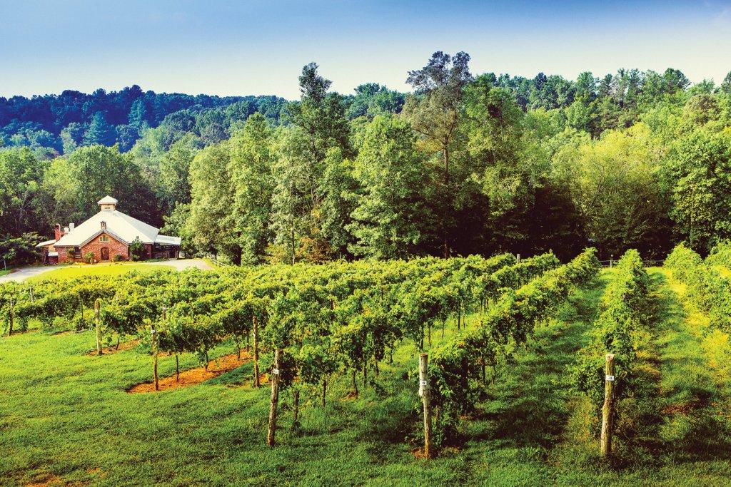 Elkin Creek Vineyard and Winery