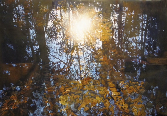 "Autumn Light,  November, 33"" x 48"", oil on metal  by Drew Galloway"
