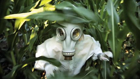 In one scene from GMO OMG, Seifert and his kids donned biohazard suits and ran through a GMO cornfield.