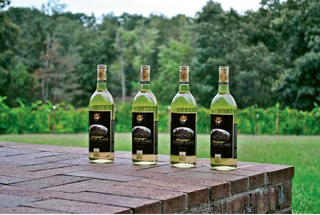 Six Waterspots Vineyard and Winery