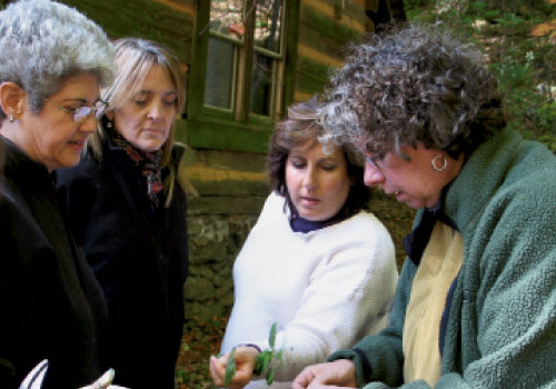 Herbalist Patricia Howell (right) teaches students ethical wildcrafting. Photograph courtesy of Patricia Howell