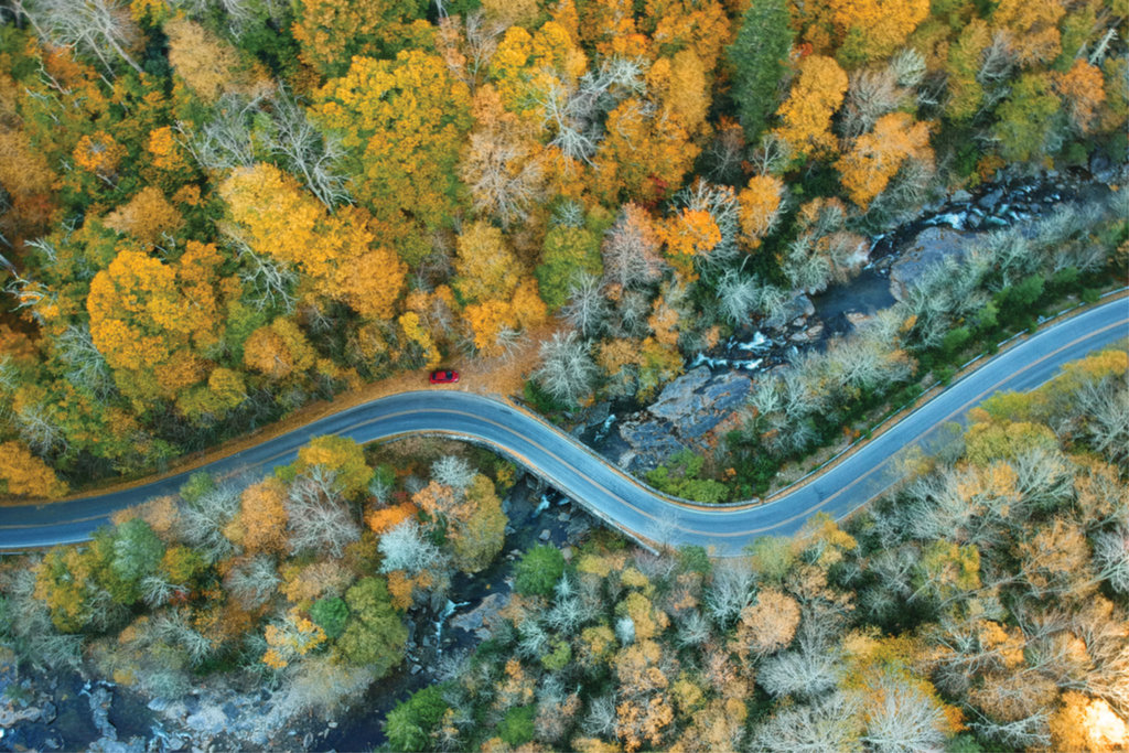 PROFESSIONAL CATEGORY - Bird's-Eye View - James Mahan - Mahan used a DJI Drone to capture this fall aerial shot overlooking NC highway 215 that snakes from Transylvania to Haywood County.