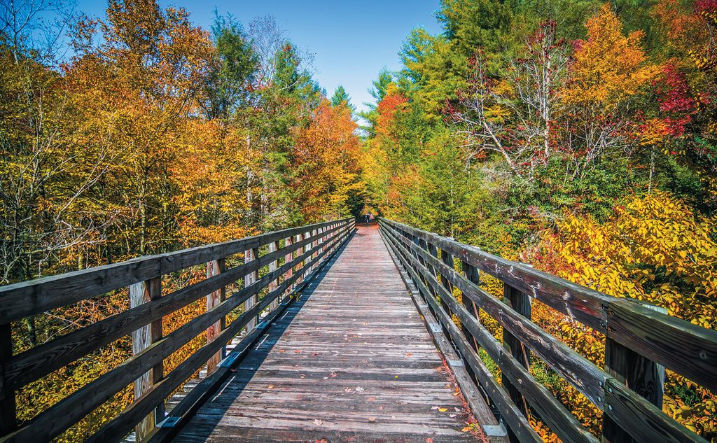 Virginia Creeper Trail. Photo courtesy of Shutterstock/Digidreamgrafix